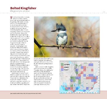 Page 105 - Click to open pdf © 2014 Napa-Solano Audubon Society